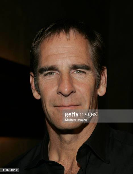 Scott Bakula during 'Star Trek Enterprise' Cast and Crew Gather to Celebrate the Series Finale at Hollywood Roosevelt Hotel in Hollywood California...