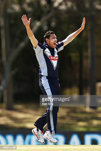 Scott Boland of the Bushrangers appeals successfully for the wicket of Callum Ferguson of the Redbacks during the Ryobi Cup match between the South...