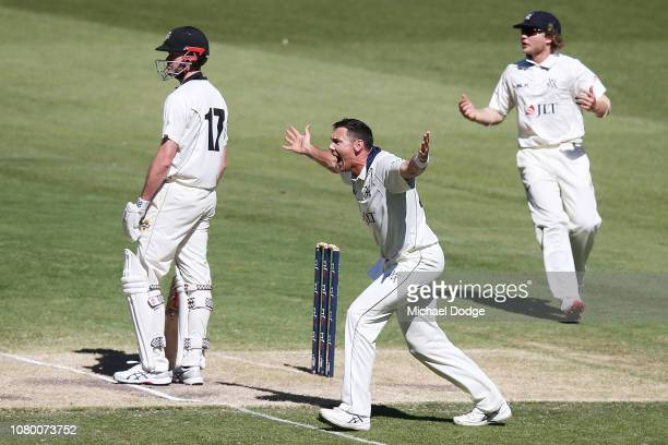 Scott Boland of Victoria appeals for the dismissal of Ashton Turner of Western Australia during day four of the Sheffield Shield match between...