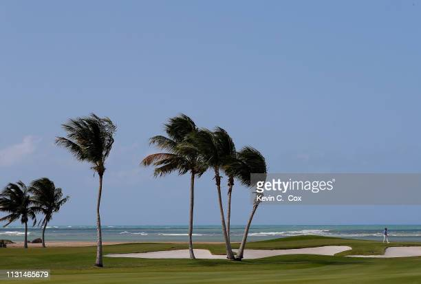 Scott Brown walks the 12th green during the second round of the Puerto Rico Open at Coco Beach Golf and Country Club on February 22 2019 in Rio...