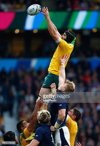 Scott Fardy of Australia wins a lineout ball during the 2015 Rugby World Cup Quarter Final match between Australia and Scotland at Twickenham Stadium...