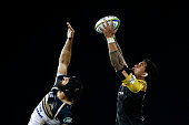 napier new zealand scott fardy brumbies