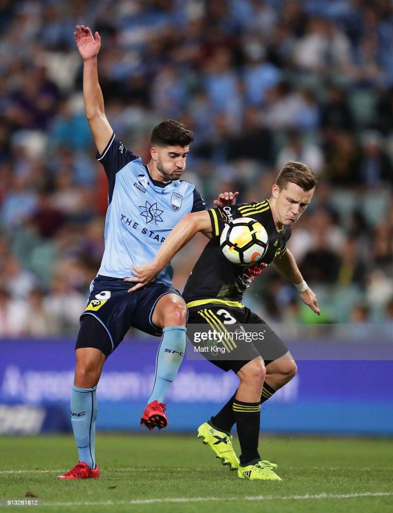 A-League Rd 19 - Sydney v Wellington