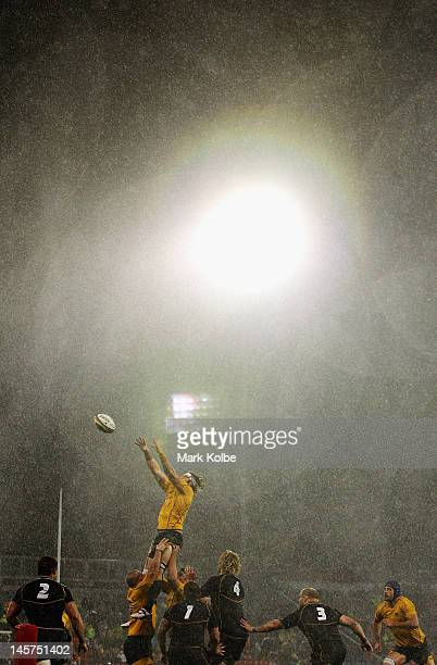 Scott Higginbotham of the Wallabies wins the line out during the International Test match between the Australian Wallabies and Scotland at Hunter...