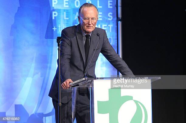 Scott Johnson speaks onstage during the Global Green USA 19th Annual Millennium Awards on June 6 2015 in Century City California