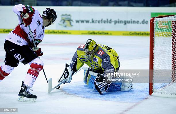 Scott Langkow of Krefeld and Jerome Flaake of Koeln compete for the puck during the DEL Bundesliga game between Krefeld Pinguine and Koelner Haie at...