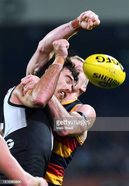 Scott Lycett of Port Adelaide rucks against Reilly O'Brien of the Crows during the round eight AFL match between the Port Adelaide Power and the...