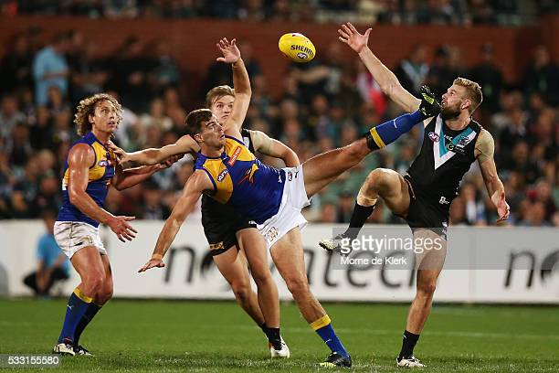 Scott Lycett of the Eagles and Jackson Trengove of the Power compete in the ruck during the round nine AFL match between the Port Adelaide Power and...