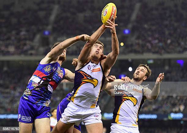 Scott Lycett of the Eagles marks infront of Tom Campbell of the Bulldogs during the round 11 AFL match between the Western Bulldogs and the West...