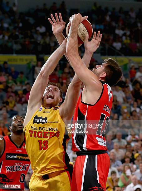 Scott Morrison of the Tigers and Tom Jervis of the Wildcats compete for the ball during the round 16 NBL match between the Melbourne Tigers and the...