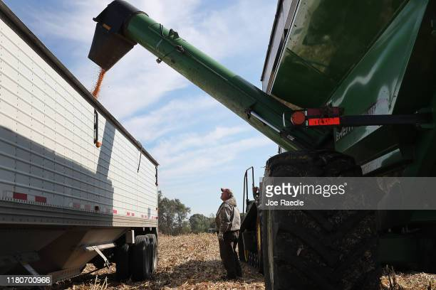 Scott Pyle waits for his truck to be filled with corn being harvested at the Hansen Family Farms on October 12 2019 in Baxter Iowa The 2020 Iowa...