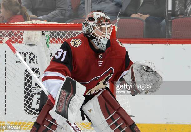 Scott Wedgewood of the Arizona Coyotes gets ready to make a save against the Dallas Stars at Gila River Arena on February 1 2018 in Glendale Arizona