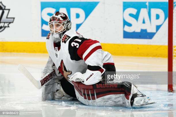 Scott Wedgewood of the Arizona Coyotes looks on during a NHL game against the San Jose Sharks at SAP Center on February 13 2018 in San Jose California