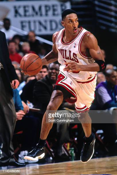 Scottie Pippen of the Chicago Bulls handles the ball against the Charlotte Hornets on May 3 1998 at the United Center in Chicago Illinois NOTE TO...