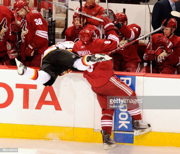 Scottie Upshall of the Phoenix Coyotes checks a Calgary Flames player on to the bench on January 28 2010 at Jobingcom Arena in Glendale Arizona