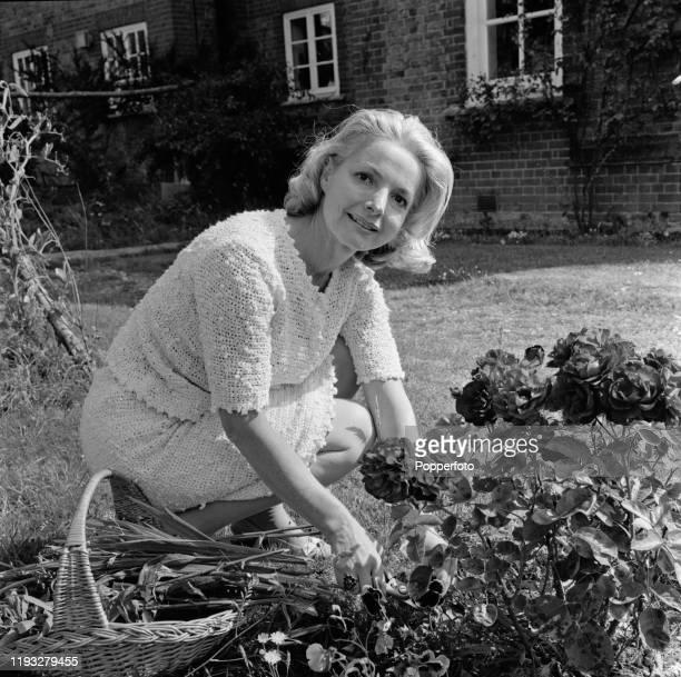 Scottish actress Elizabeth Sellars prunes flowers in the garden of her house in Buckinghamshire England in August 1967 Elizabeth Sellars plays the...