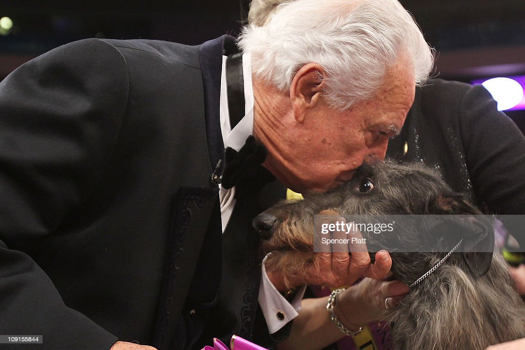 World's Top Canines Compete At Westminster Dog Show : News Photo