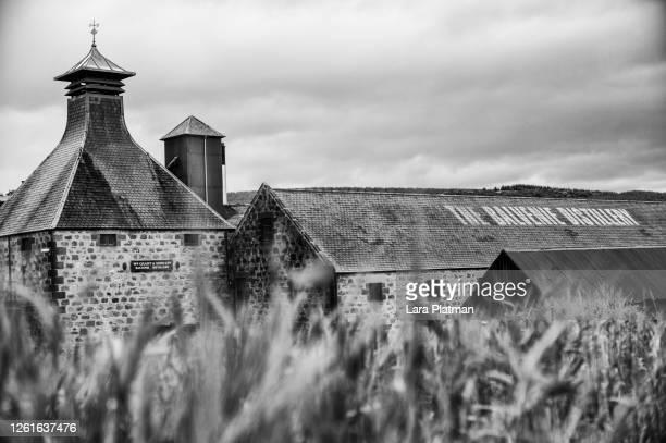 scottish distillery - balvenie - lara platman stock pictures, royalty-free photos & images