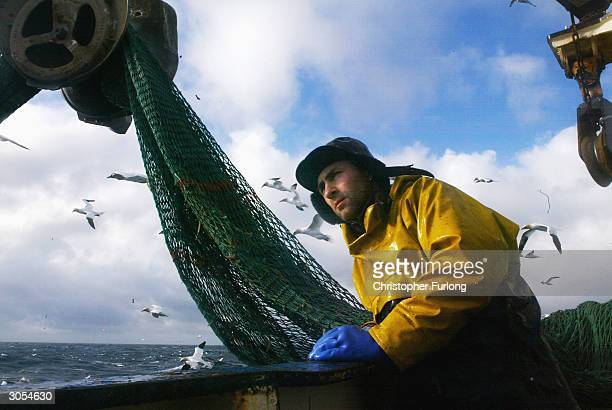 Scottish fisherman Mike Nichol on board the trawler Carina as the crew haul in their catch some 70 miles off the North coast of Scotland in The North...