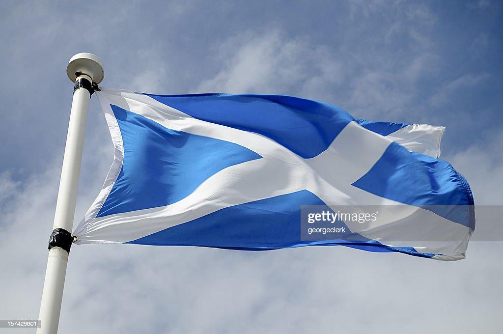 Scottish Flag in Wind : Stock Photo