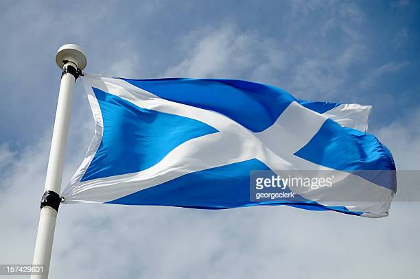 scottish flag in wind - st. andrews scotland stock pictures, royalty-free photos & images