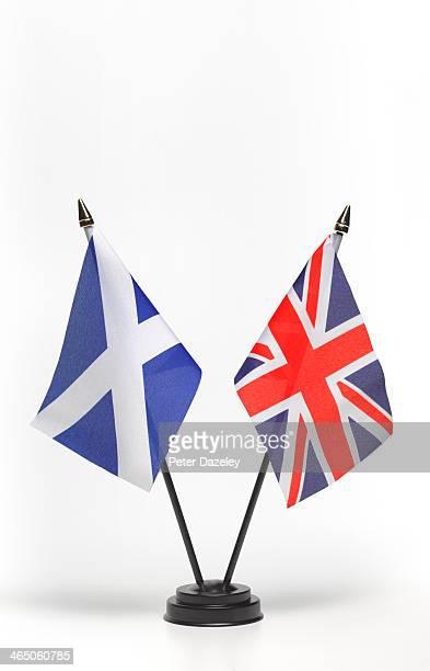 Scottish independence referendum flags