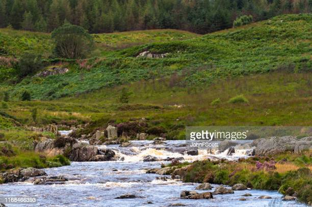 scottish river in a rural setting - johnfscott stock pictures, royalty-free photos & images