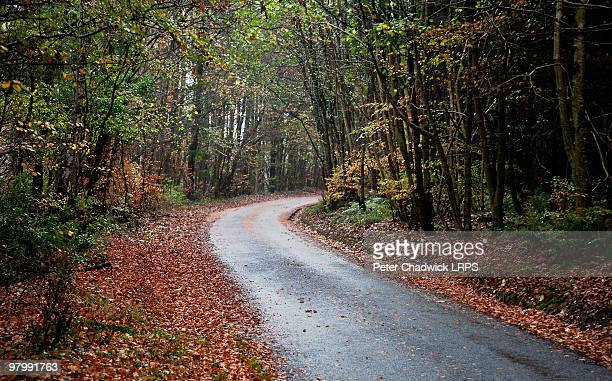 scottish roadway - dumfries stock pictures, royalty-free photos & images