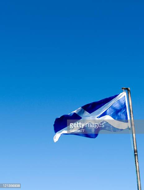 scottish saltire blowing in the wind - scotland flag stock photos and pictures