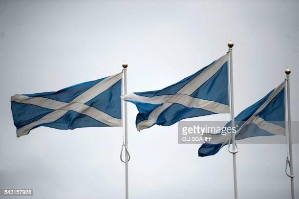 Scottish Saltire flags flutter in the breeze as they mark the border with England near BerwickuponTweed in northern England close to the border...