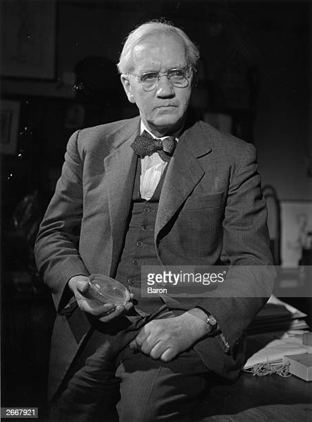 Scottish scientist bacteriologist and Nobel laureate Sir Alexander Fleming holding a petri dish which is used to grow cell cultures for laboratory...