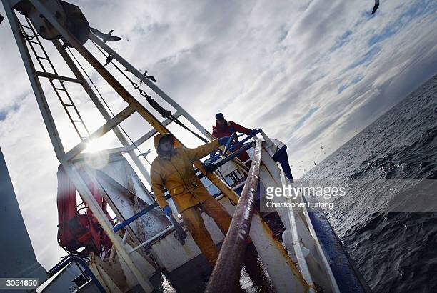 Scottish trawler men aboard the trawler Carina haul in their catch some 70 miles off the North coast of Scotland in The North Atlantic on March 5...