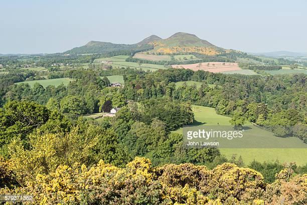 scott's view, scottish borders - ケルソー ストックフォトと画像