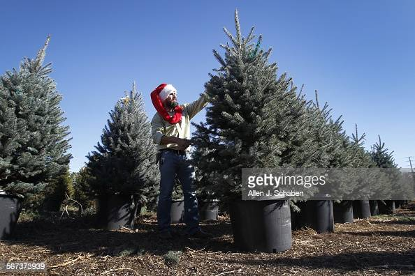 Scotty Scotty Claus Martin Founder Of The Living Christmas News P O Getty Images