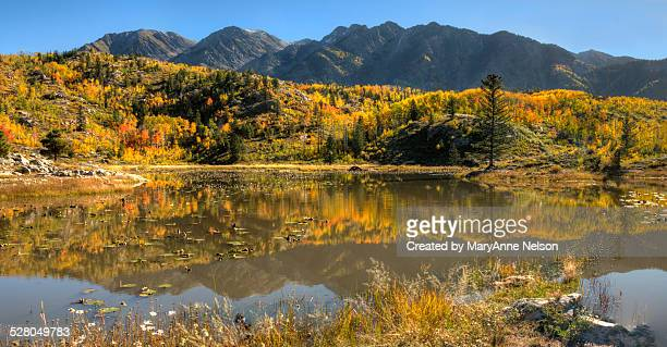 scout lake autumn - mary lake stock photos and pictures