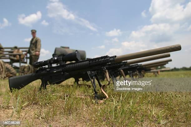 Scout Snipers line up their new MK-11 sniper rifles.