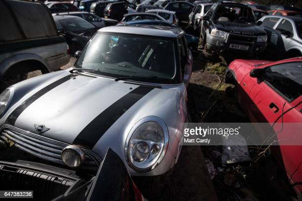 Scrap cars wait to be processed at Pylle Motor Spares and Metal Processing a licensed scrap yard in Pylle near Shepton Mallet on March 2 2017 in...