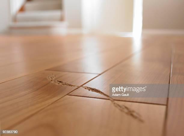 Scratch on Wooden Floor