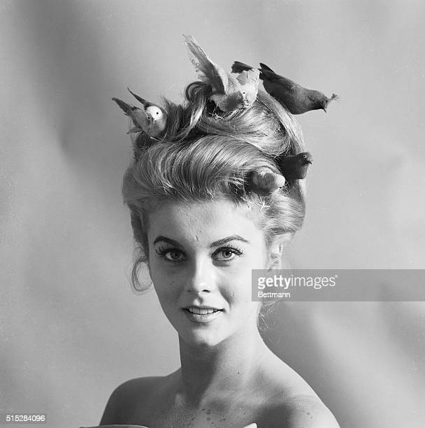 """Screen star Ann-Margaret, star of the movie """"Bye Bye Birdie"""", which premiers at Radio City here April 4th, sports hairdo inspired by the film. George..."""
