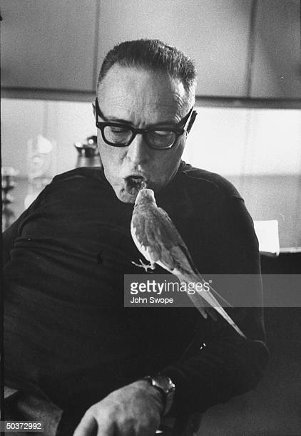 Screen writer and director Dalton Trumbo talking to his pet bird perched on his chest