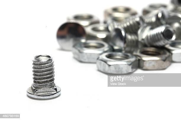 Screw nut