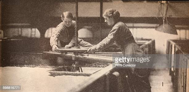 Screwing Down the Yeast in a Burton-On-Trent Brewery, circa 1916, . Women screwing down the yeast in a Burton-On-Trent brewery, during World War I....