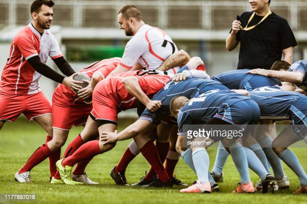 scrum action on rugby match! - rugby team stock pictures, royalty-free photos & images
