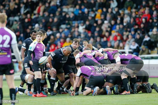 A scrum goes down during the Greene King IPA Championship match between Newcastle Falcons and Cornish Pirates at Kingston Park Newcastle on Sunday...
