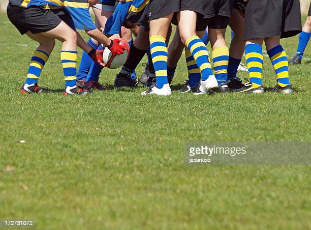 scrum - rugby stock pictures, royalty-free photos & images