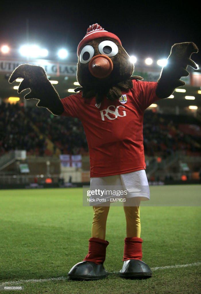 Scrumpy the Robin, Bristol City mascot