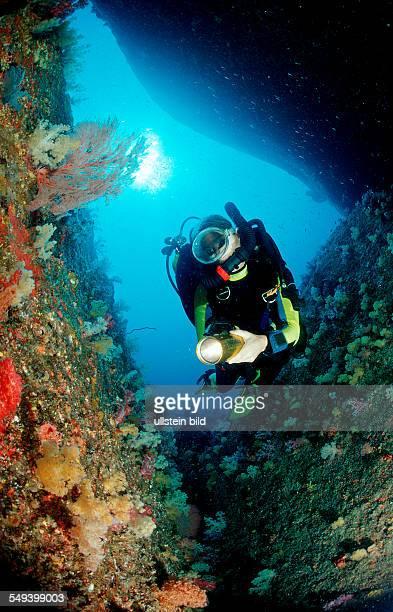 Scuba diver and coral reef Thailand Indian Ocean Phuket Similan Islands Andaman Sea