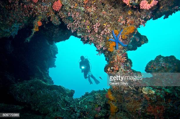 scuba diver and pescador island caves - provincia de cebú fotografías e imágenes de stock