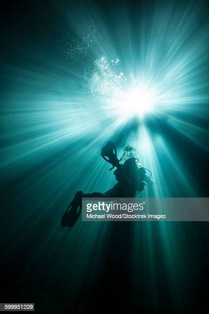 a scuba diver ascends into the light emanating above. - spelunking stock pictures, royalty-free photos & images
