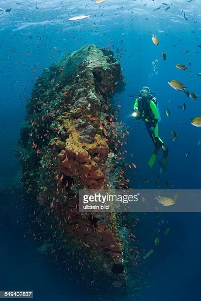 Scuba Diver at Liberty Wreck Tulamben Bali Indonesia